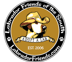 Labrador Friends of the South (Cumming, GA)